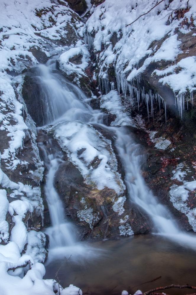 Stream-on-mountain-Vranica