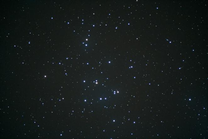 M44-Beehive-Glavna.jpg