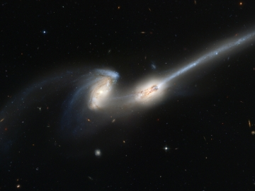 """Advanced Camera for Surveys (ACS), the newest camera on NASA/ESA Hubble Space Telescope, has captured a spectacular pair of galaxies engaged in a celestial dance of cat and mouse or, in this case, mouse and mouse. Located 300 million light-years away in the constellation Coma Berenices, the colliding galaxies have been nicknamed """"The Mice"""" because of the long tails of stars and gas emanating from each galaxy. Otherwise known as NGC 4676, the pair will eventually merge into a single giant galaxy."""