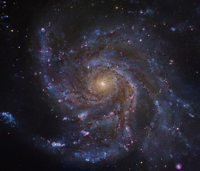 M101-HST-GendlerL
