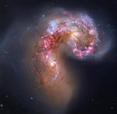 NGC4038-HST-LL